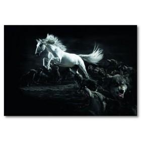 Αφίσα (μαύρο, λευκό, άσπρο, άλογο, ζώο, wlld, λύκοι)